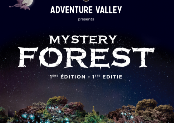 mystery forest spectacle son et lumiere